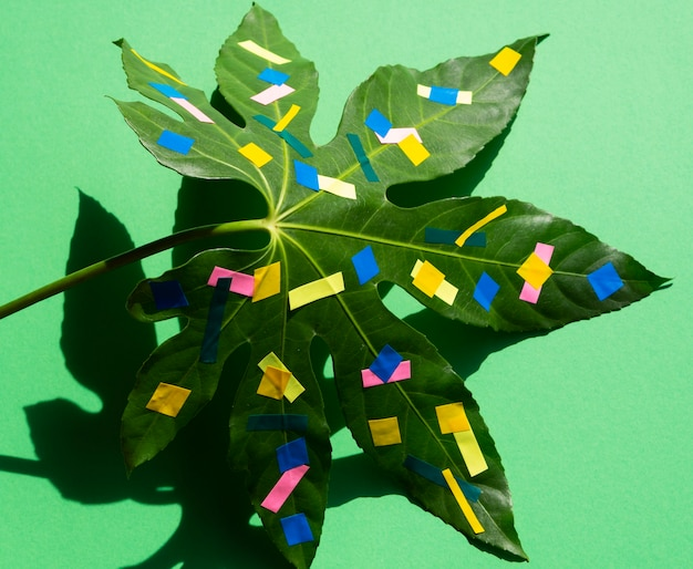 Painted chestnut leaf minimal nature still life concept