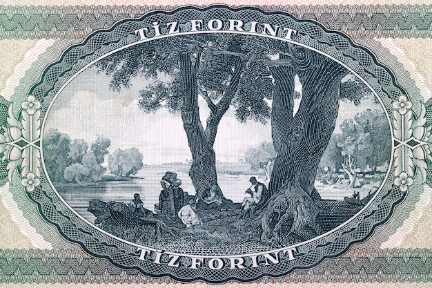 Painting birth of the song from old hungarian money