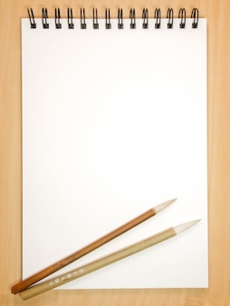 Painting book with chinese brushes
