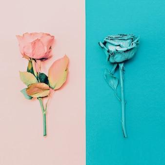 バラの絵。ミニマリズムのファッションアート。