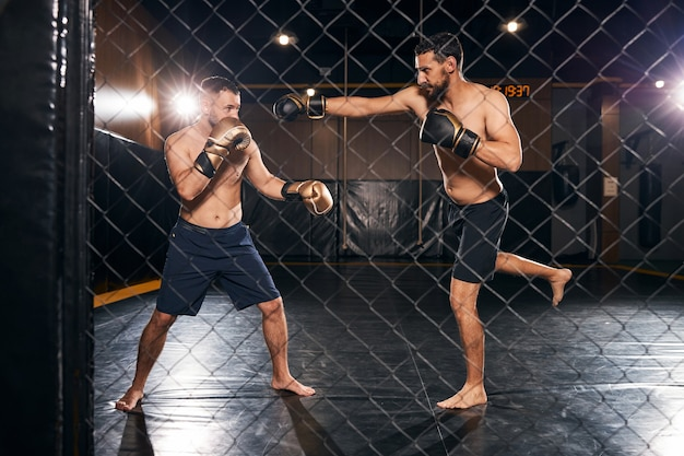 Pair of fighters having a sparring in the ring behind the grid