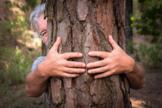 A pair of human hands hugging a tree in the woods - love for the outdoors and nature - earth day concept. an old man hiding from the trunk. people save the planet from deforestation