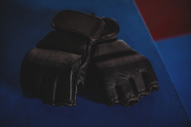 Pair of mma gloves