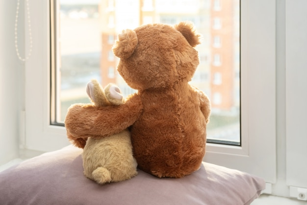 Pair of toys. bunny and teddy bear embracing loving teddy bear toy and bunny sitting and looking in windows