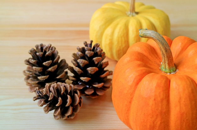 Pair of vibrant color ripe pumpkins with natural dry pine cones on the wooden table