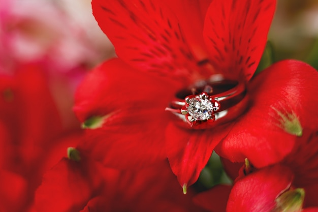 Pair of wedding and engagement rings in red alstroemeria flower