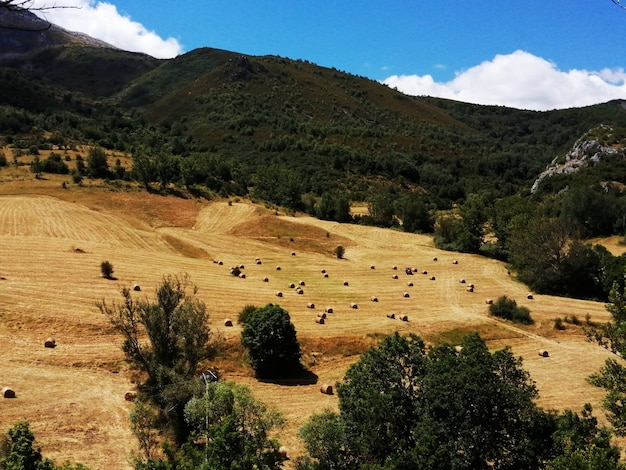 Paisaje agrario de montaa con trabajos agricolas en laderas inclinadas