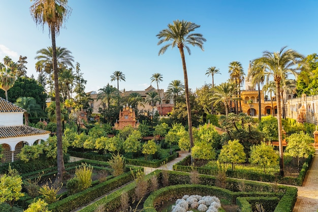 세비야의 royal alcazar gardens에있는 palam 나무, 분수 및 초목.