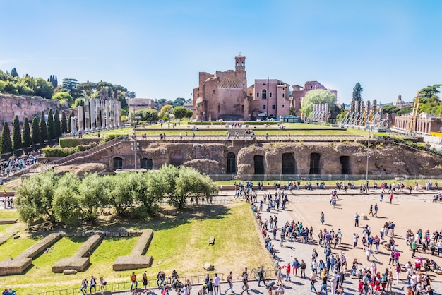 The palatine hill, view from the coliseum.