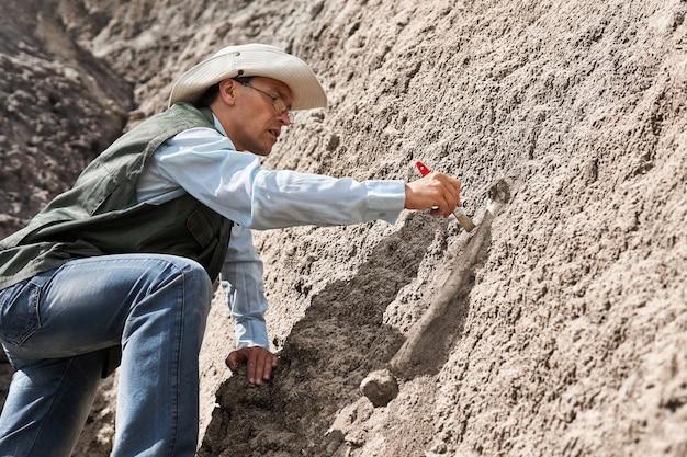 古生物学者は、岩石をブラシで洗浄することにより、岩石から化石の骨を抽出します