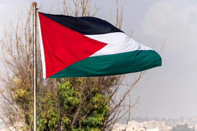 Palestine flag on the top of building in palestine,