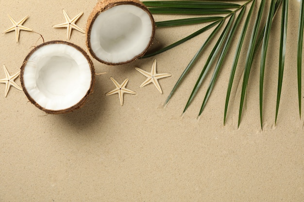 Palm branch, coconut and starfishes on sea sand, space for text