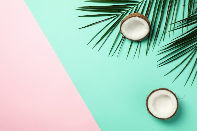 Palm branches and coconut on two tone, space for text