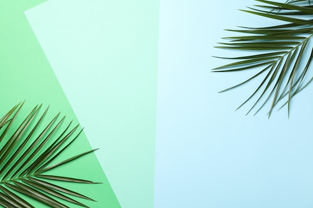 Palm branches on three tone, space for text