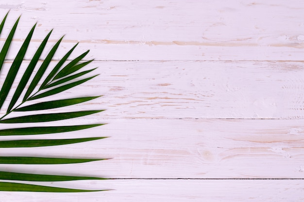 Palm coconut leaves on white wood