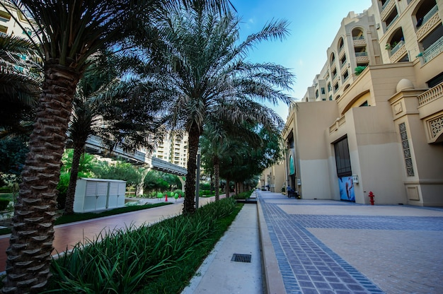 The palm jumeiraj street view