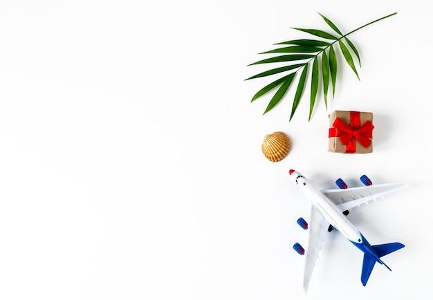 ヤシの葉、飛行機、貝殻、白い表面の贈り物