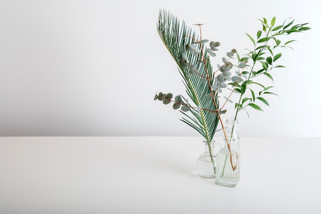 Palm leaf eucalyptus and sprig of greenery bouquet in glass vases on white background. green tropical plants minimalism. set variety of tropical leaves and plants on white table with copy space.