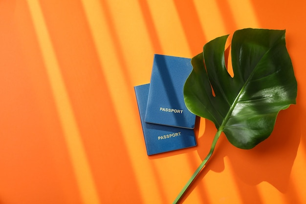 Palm leaf and passports on orange