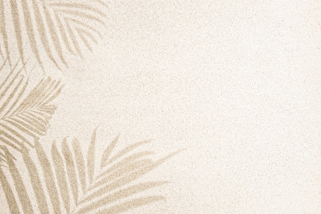 Palm leaf shadow on sand, top view, copy space