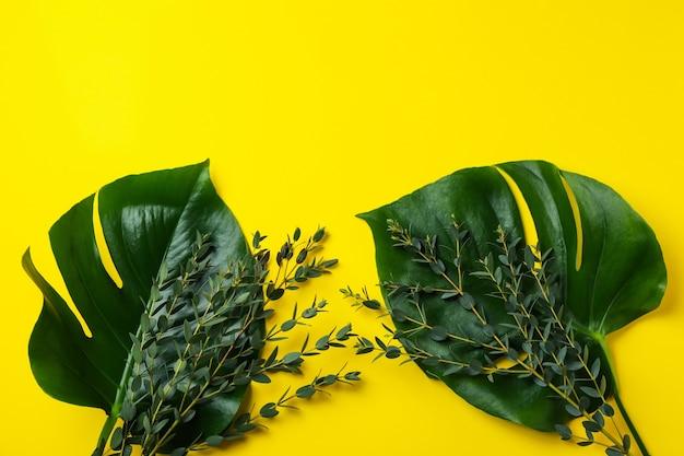 Пальмовые листья и веточки на желтом