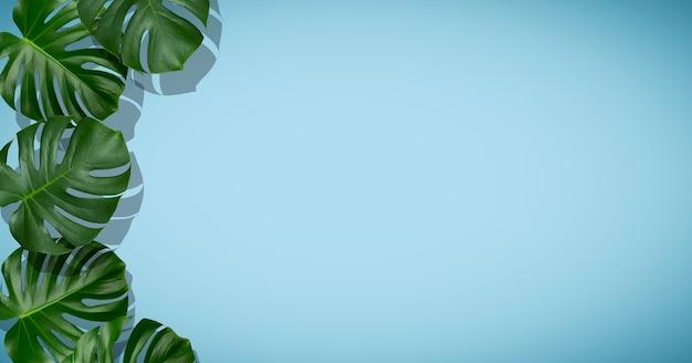 야자수 잎 배경 열대 야자수는 빈 색의 배경 여름 열대 태양 vacati...