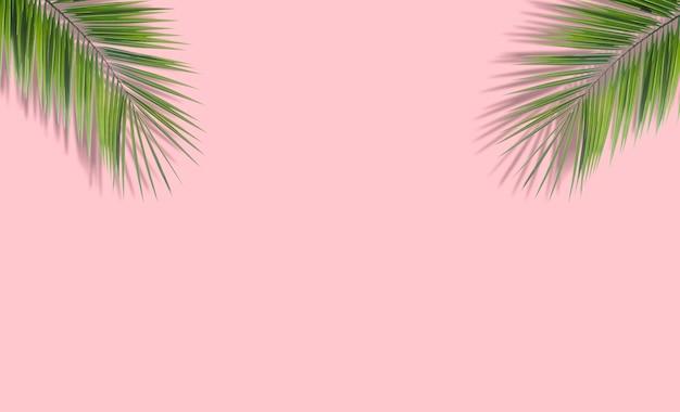 Фон из пальмовых листьев. тропические пальмовые листья на пустом цветном фоне