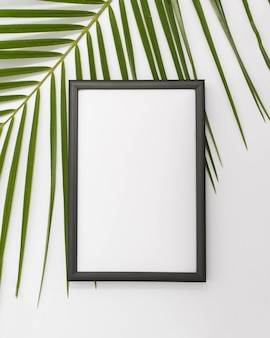 Palm leaves branch with empty frame over white backdrop