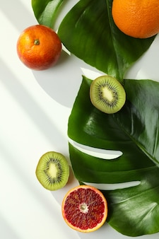 Palm leaves and fruits on white