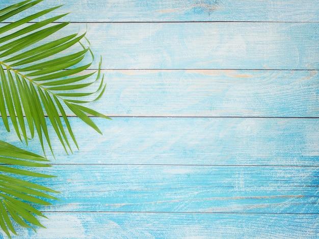 Пальмовые листья на голубом фоне.