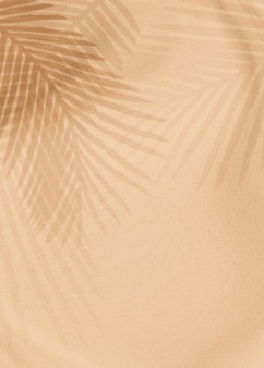 Palm leaves shadow on a beige