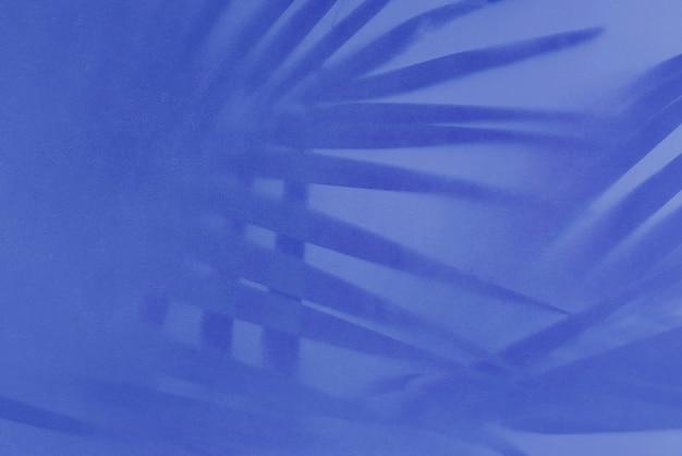 Ombra di foglie di palma su sfondo blu