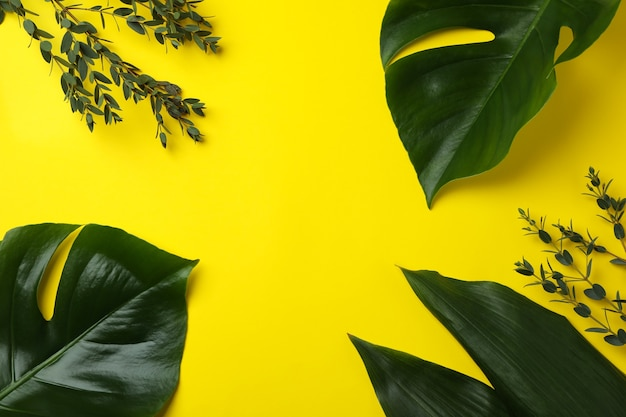 Palm leaves and twigs on yellow isolated background, space for text