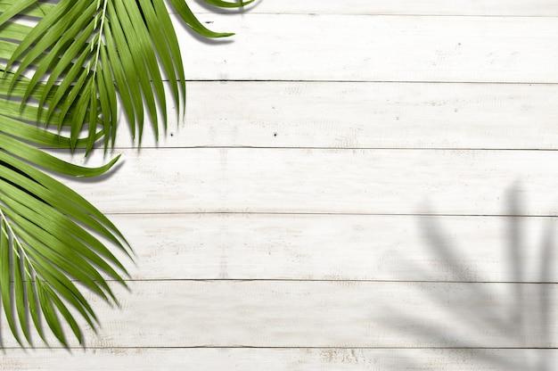 Пальмовые листья Premium Фотографии