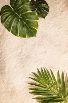 Palm and monstera leaves on yellow beach