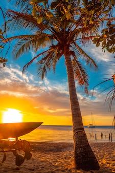 A palm tree on the beach at sunset from west end beach, roatan island. honduras