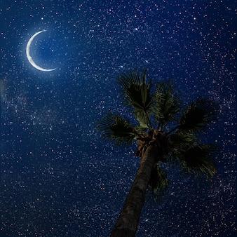 Пальма в ночном небе со звездами и луной. элементы этого изображения предоставлены наса