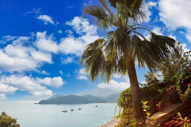 푸른 에게 해, 무성한 산, 푸른 하늘의 솜털 구름, 하얀 모래와 사람들이 있는 해변을 배경으로 산 위의 야자수. 휴식, 레크리에이션 및 여행의 개념입니다. 복사 공간