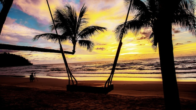 Palm tree and swing with sunset.