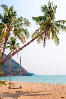 Пальма с подвесными качелями на берегу океана