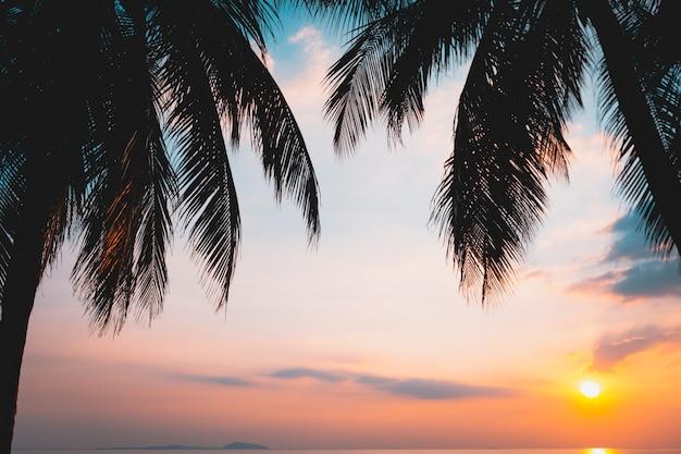 ビーチに沈む夕日とヤシの木 Premium写真