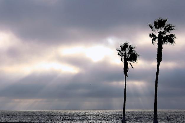 Пальмы и красочное небо с красивым закатом