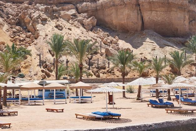 ヤシの木とビーチの海に傘が付いている空のデッキチェア。観光シーズン