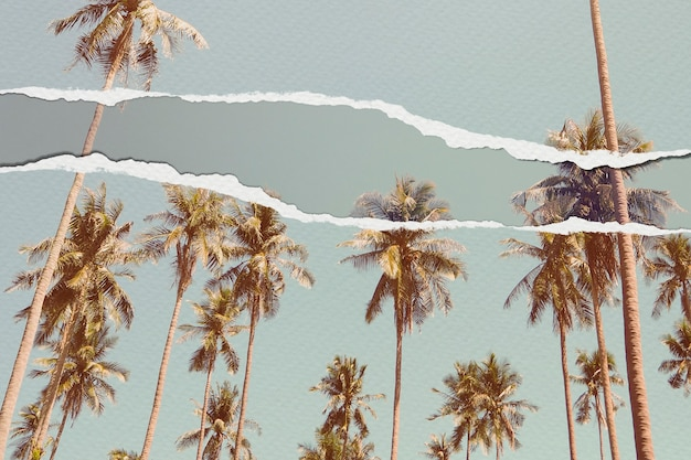 Palm trees image in torn paper style