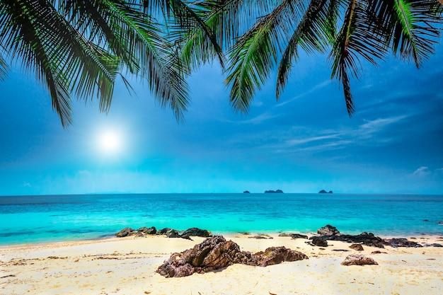 태국 크라비 지방의 열대 해변과 푸른 하늘에 흰 구름이 있는 야자수