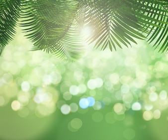 Palm trees with bokeh effect