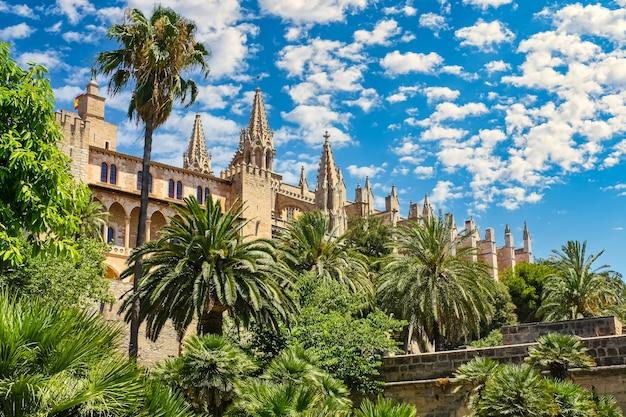熱帯のヤシの木と雲のある青い空のあるパルマデマヨルカ大聖堂。