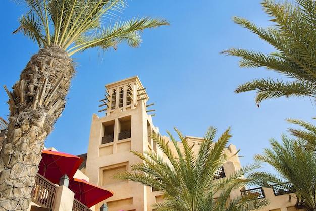 Пальмы и арабская архитектура в солнечный день