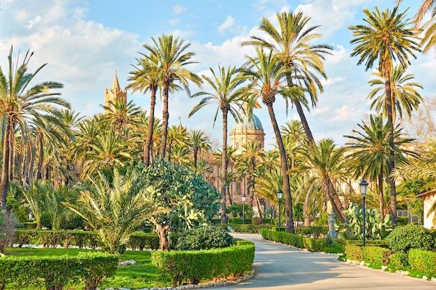 빌라 보난노(villa bonanno) 공공 정원의 야자수와 배경의 팔레르모 대성당(palermo cathederal), 팔레르모, 시칠리아, 이탈리아