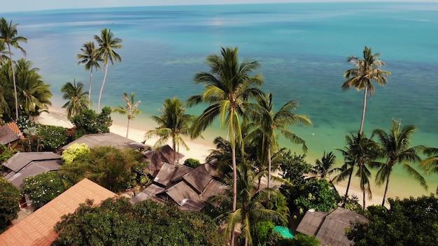 Пальмы на пляже, синее море. взгляд дрона тропических кокосовых пальм на песчаном побережье.